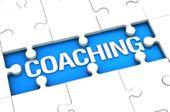 Definición de Coach Ontologico