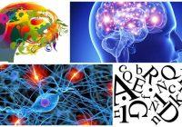 Definición de Neurolinguística